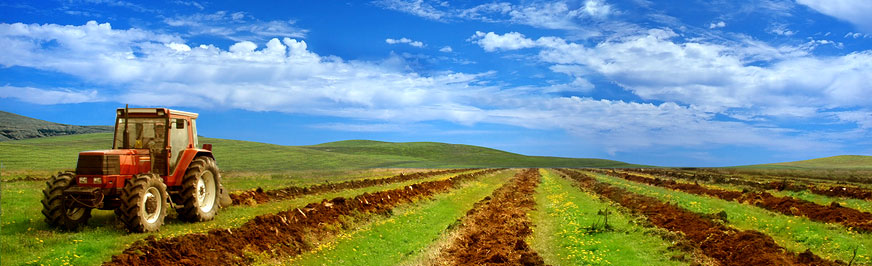 Traktor orzący pole